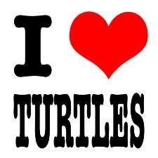 Set Of 10 I Love Turtles Sticker Set