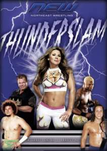 NEW Wrestling: Thunderslam DVD, Mickie James WWE Diva