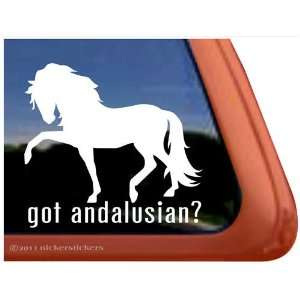Got Andalusian? Horse Trailer Vinyl Window Decal Sticker
