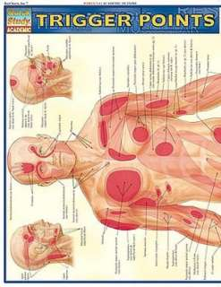 BARNES & NOBLE  Trigger Points: Understanding Myofascial Pain and