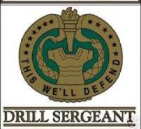 US ARMY DRILL SERGEANT DI CAR WINDOW PATCH DECAL