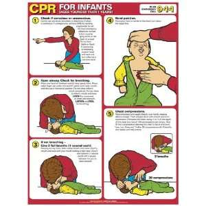 CPR For Infants Laminated Anatomy Chart:  Industrial