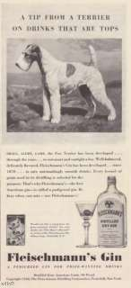 1940 Fox Terrier Dog Fleischmanns Gin vintage print ad