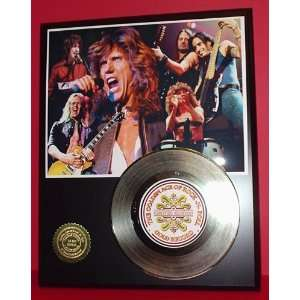 Whitesnake 24kt Gold Record LTD Edition Display ***FREE