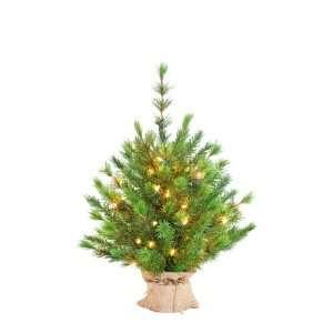 Kurt Adler 24 Inch Pre Lit Green Forest Tree