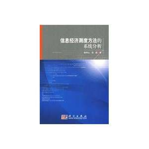 Information system analysis of economic measurement