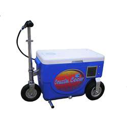 Cruzin Cooler Blue Motorized Scooter Cooler