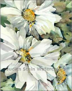 DAISY FLOWER GARDEN PATIO POTS 8 x10 Giclee Watercolor Signed Print