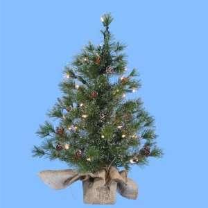 2 Pre Lit Silver Pine Artificial Christmas Tree in Burlap