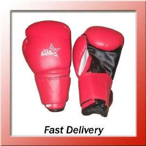 marital arts kick boxing gloves sparing MMA training punch