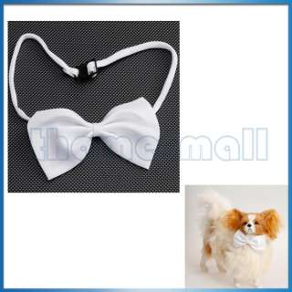 Cat Bowtie Necktie Neck Collar Decor w/ Adjustable Strap Cute Hot