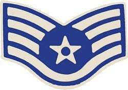 AIR FORCE USAF E 5 STAFF SERGEANT RANK LAPEL HAT PIN