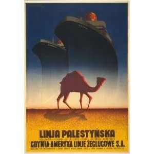 1935 camel & 2 ocean liners Polonia & Kos´ciuszko: Home