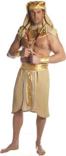 Opinion plus size pharaoh adult costume