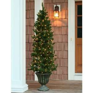 Burke Pine Christmas Tree   Clear Outdoor Lights