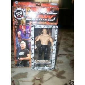 TENTH RAW ANNIVERSARY SHAWN MICHAELS ACTION FIGURE